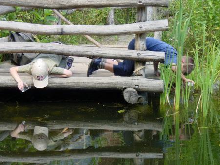 Kinder Großer Teich // HIMBEER