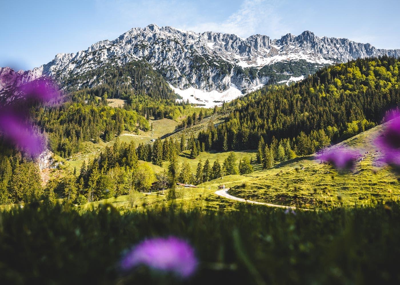 Frühling am Wilden Kaiser – Familienurlaub in Österreich // HIMBEER