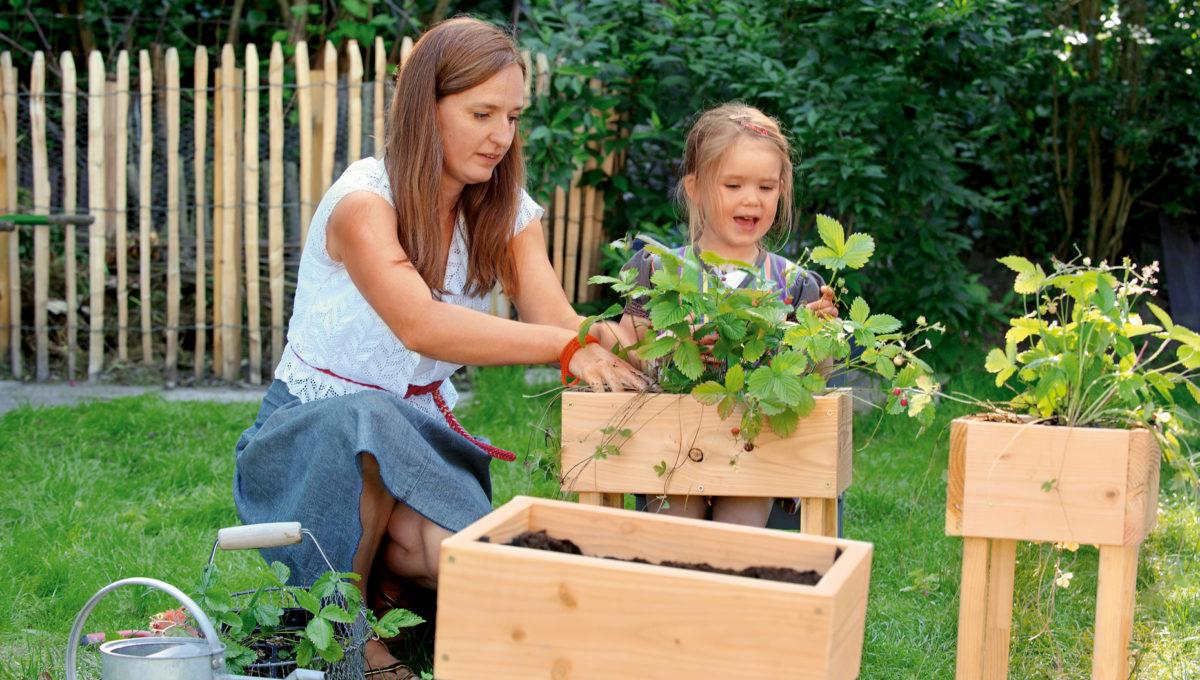Diy Ideen Ein Hochhaus Mit Erdbeeren Bauen Himbeer Familienmagazin