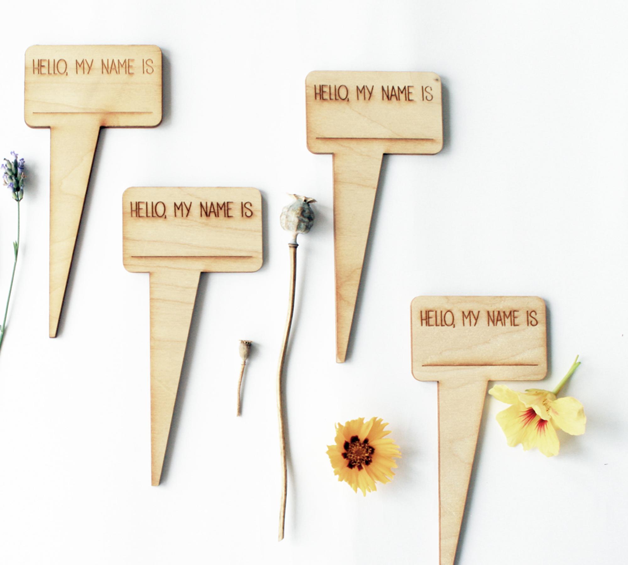 Pflanzenschild: Hello my name is | HIMBEER Magazin