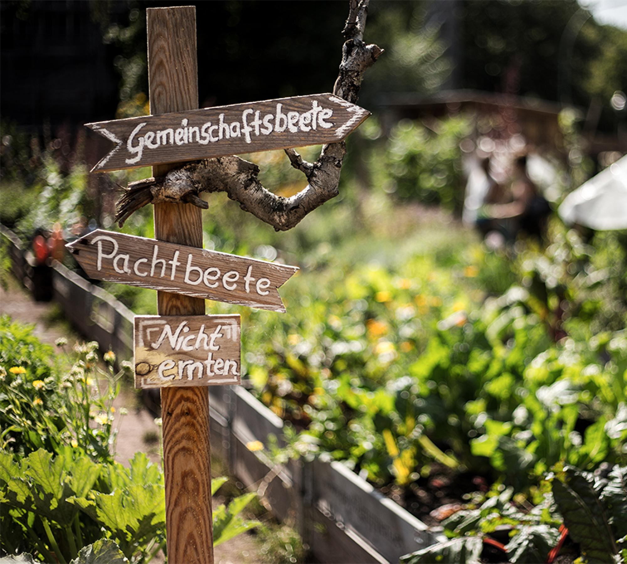 Das erste Oktober-Wochenende mit Herbstfest im Himmelbeet // HIMBEER
