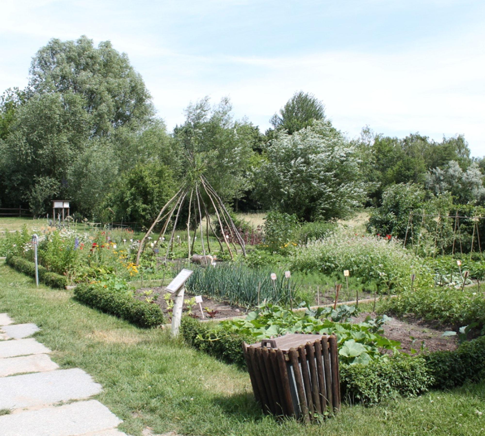 Garten der alten Fasanerie | HIMBEER Magazin