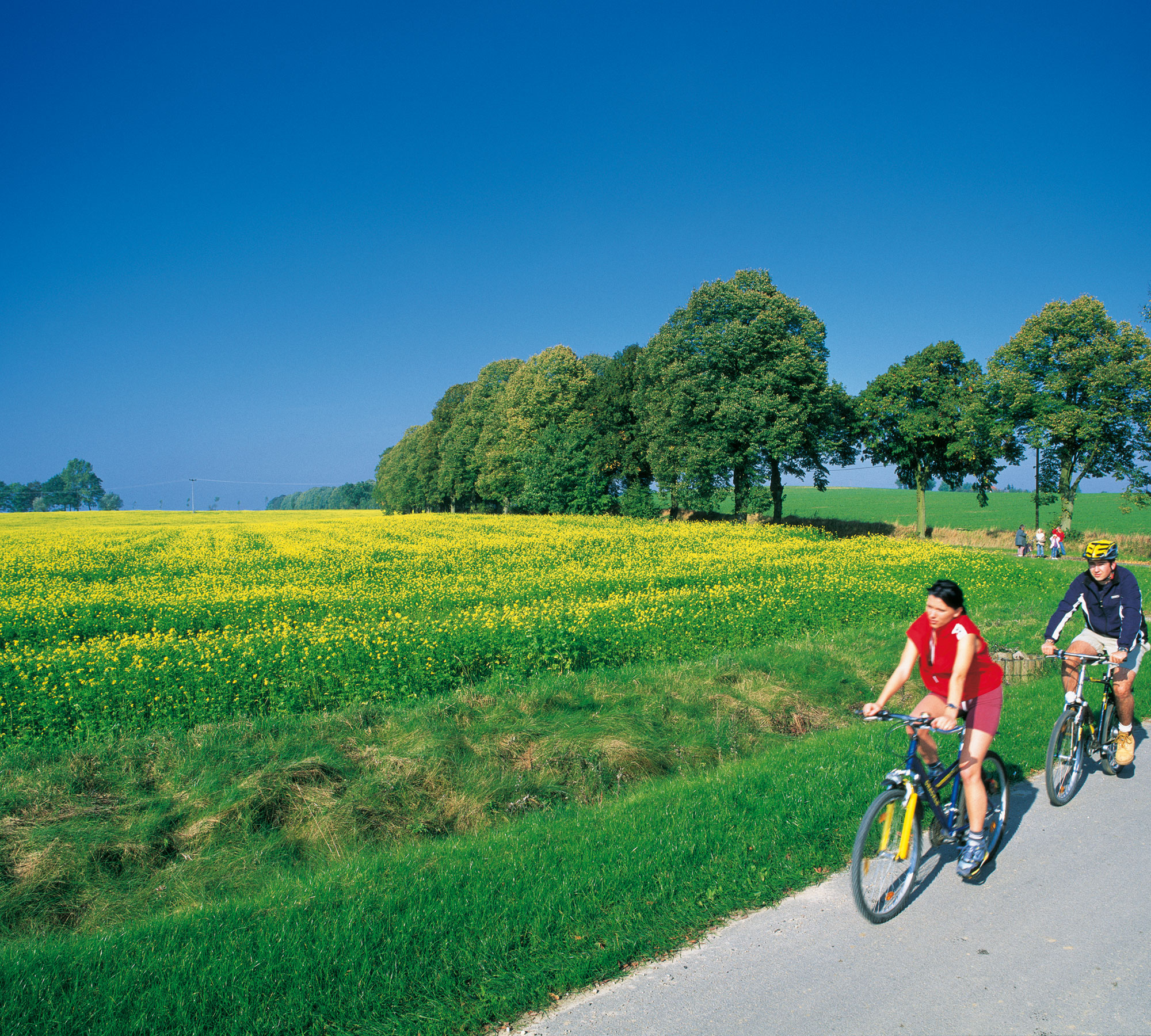 Auschnitt der Fahrradstrecke   HIMBEER Magazin