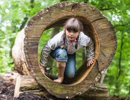 Unternehmungen mit Kindern: Barfußpark Beelitz-Heilstätten | berlinmitkind.de