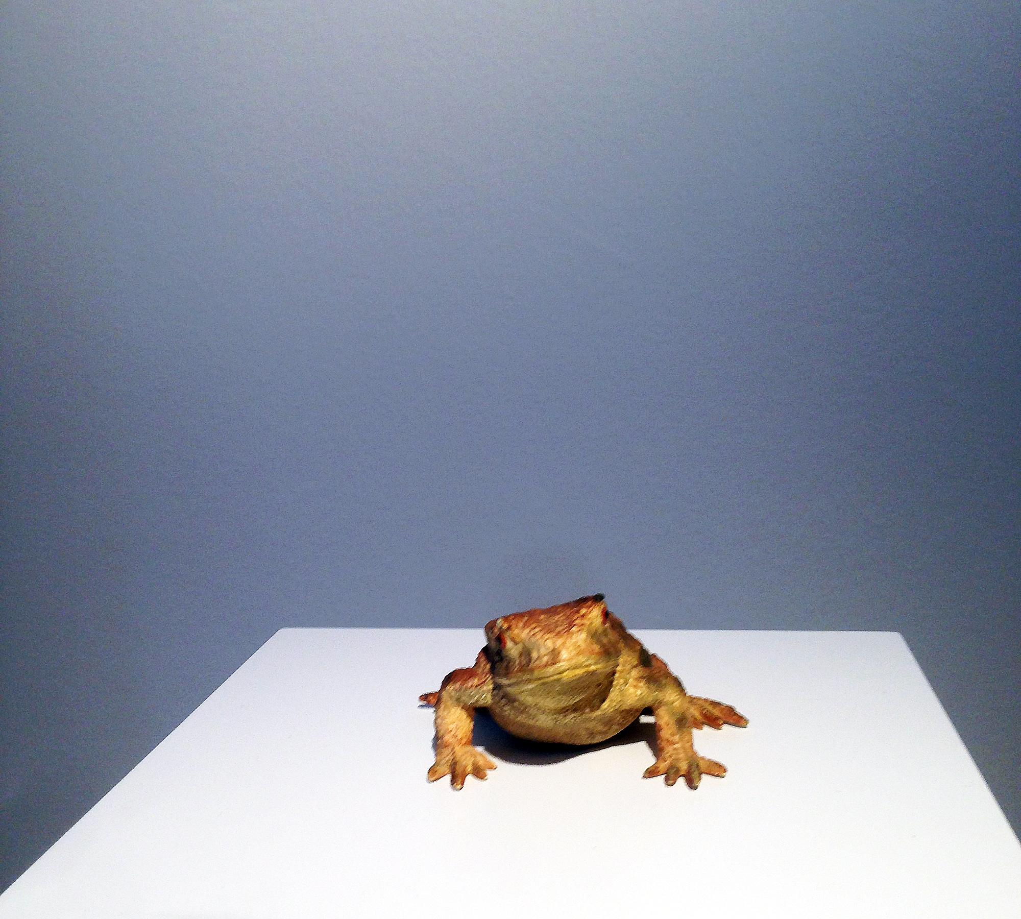 Froschkönig | HIMBEER Magazin