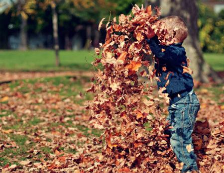 Ausflugstipps im Herbst für Familien mit Kindern in Berlin // HIMBEER