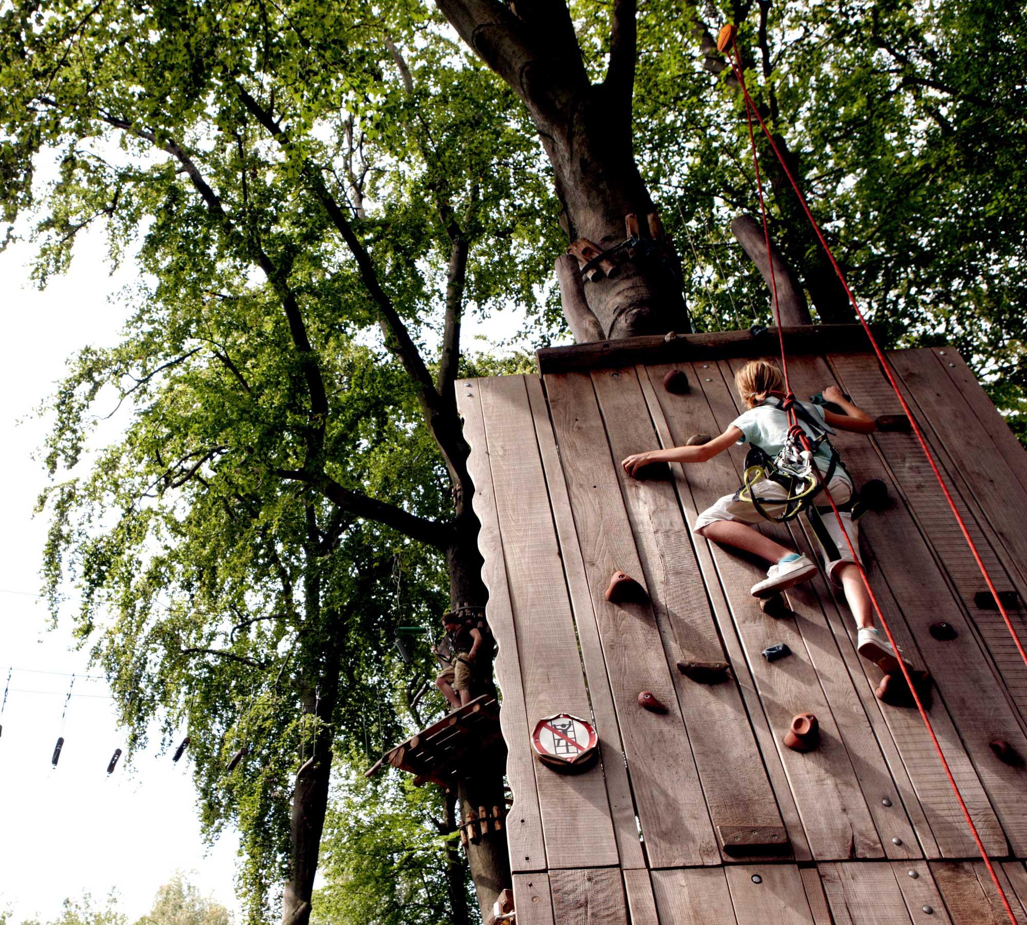 Kindergeburtstag in Berlin feiern: Waldhochseilgarten Jungfernheide