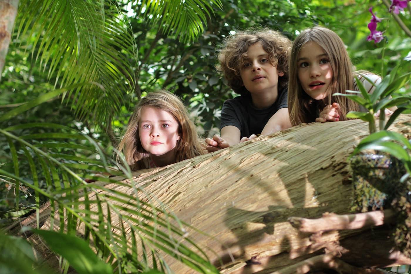Ferienkurse für Kinder in der Biosphäre Potsdam c Agentur Kraftstoff // HIMBEER