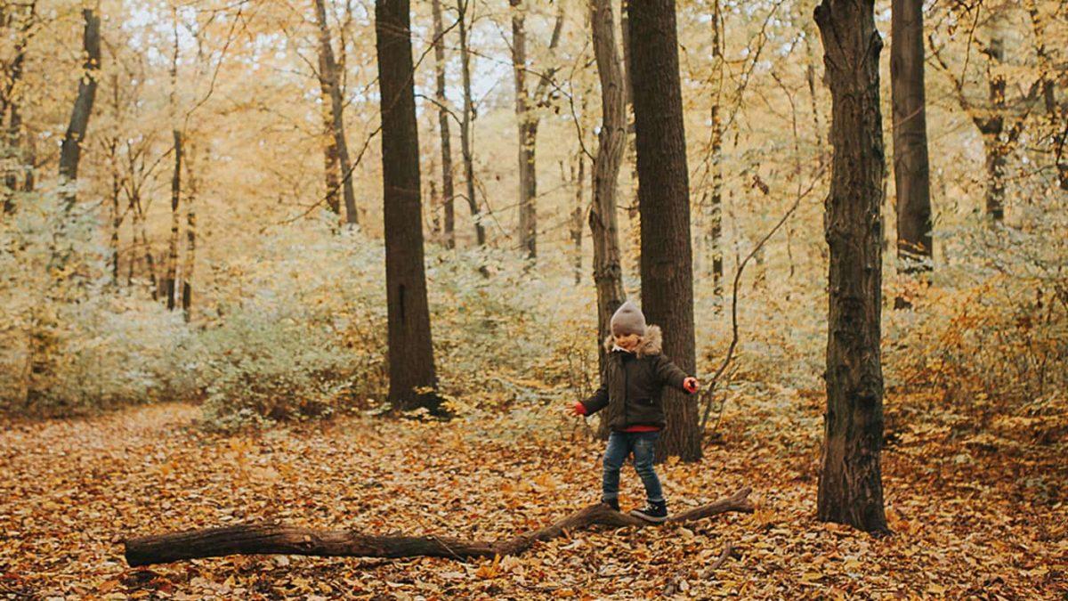 Herbst Fototipps Kinder Wald // HIMBEER