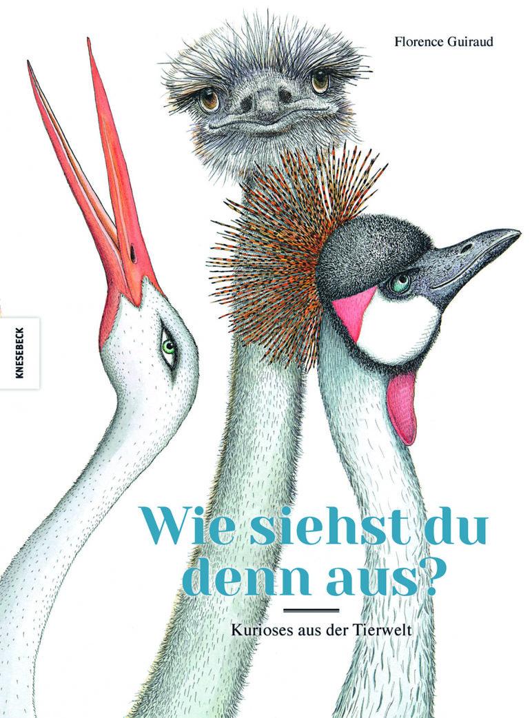Kinderbuch-Timo: wie siehst du denn aus   BERLIN MIT KIND