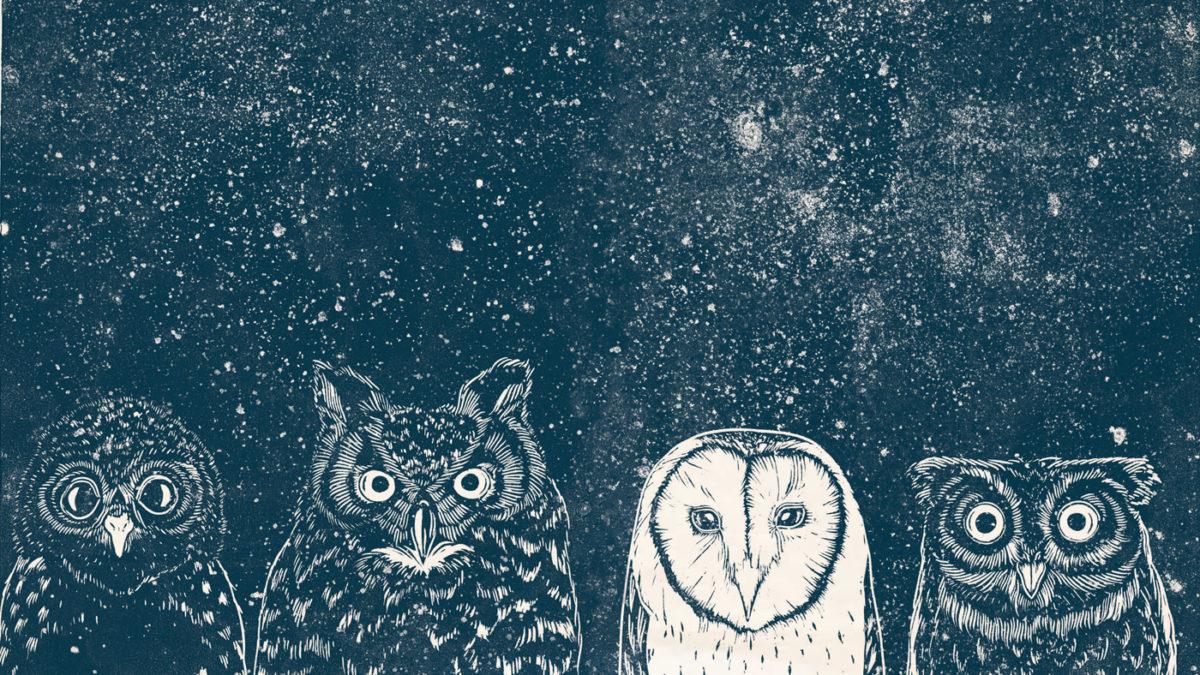 Kinderbuch-Tipp: Vom Leben der Tiere- Von Pablo Salvaje, Prestel junior | BERLIN MIT KIND