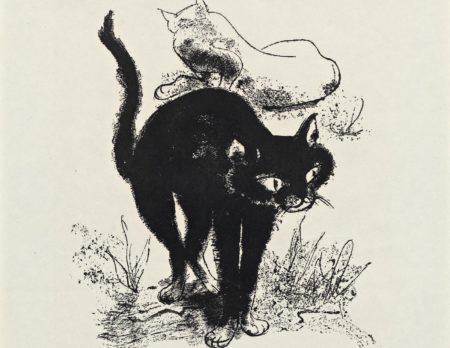 Schwarze Katze und weiße Katze von Josef Hegenbarth | BERLIN MIT KIND
