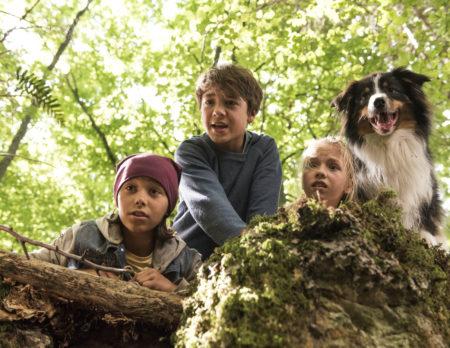 Kinofilme für Kinder: Fünf Freunde im Tal der Dinosaurier   Berlin mit Kind