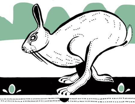 So läuft der Hase | berlinmitkind.de