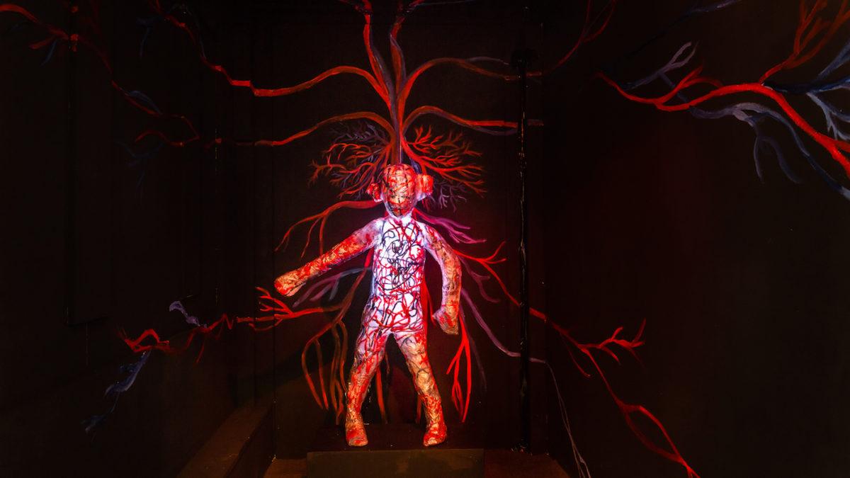 Die Blutbahnen des Körpers | berlinmitkind.de