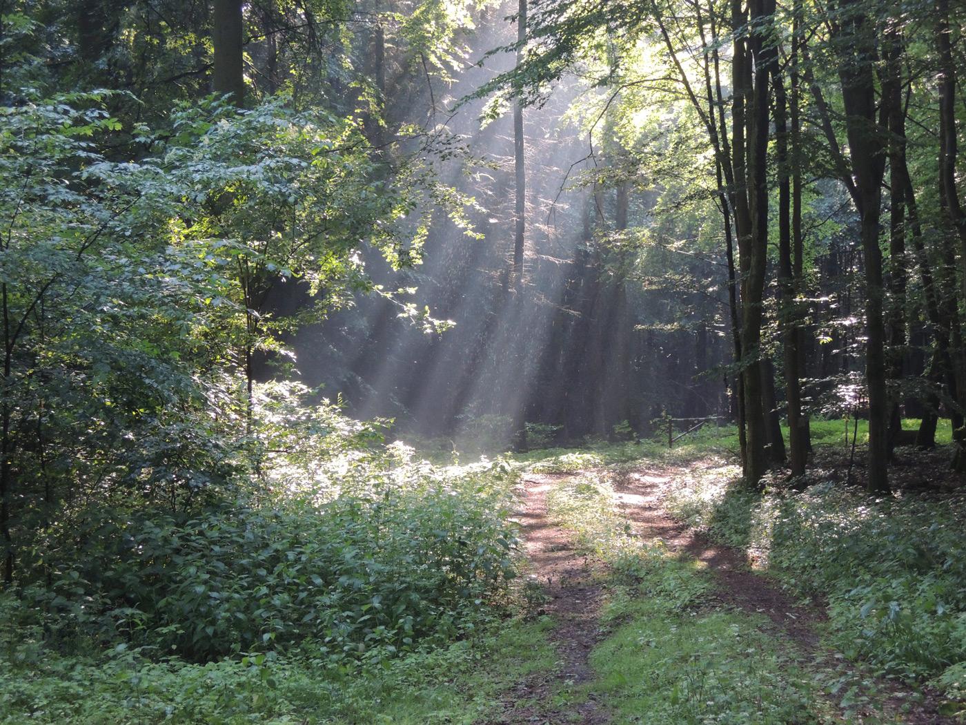 Auftanken im Biosphärenreservat