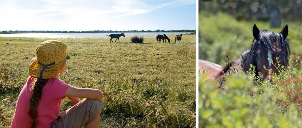Mädchen beobachtet auf Sardinien die wild lebenden Pferde | München mit Kind