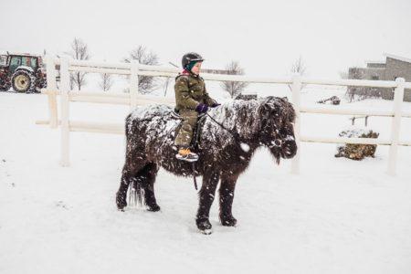 Junge auf Islandpferd im Schnee // HIMBEER