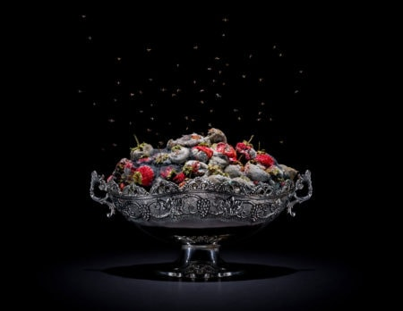 Schimmelnde Erdbeeren in einer Schale // HIMBEER