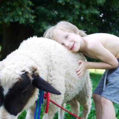 Ausflüge mit Kindern in Brandenburg: Tierische Ausflüge // HIMBEER