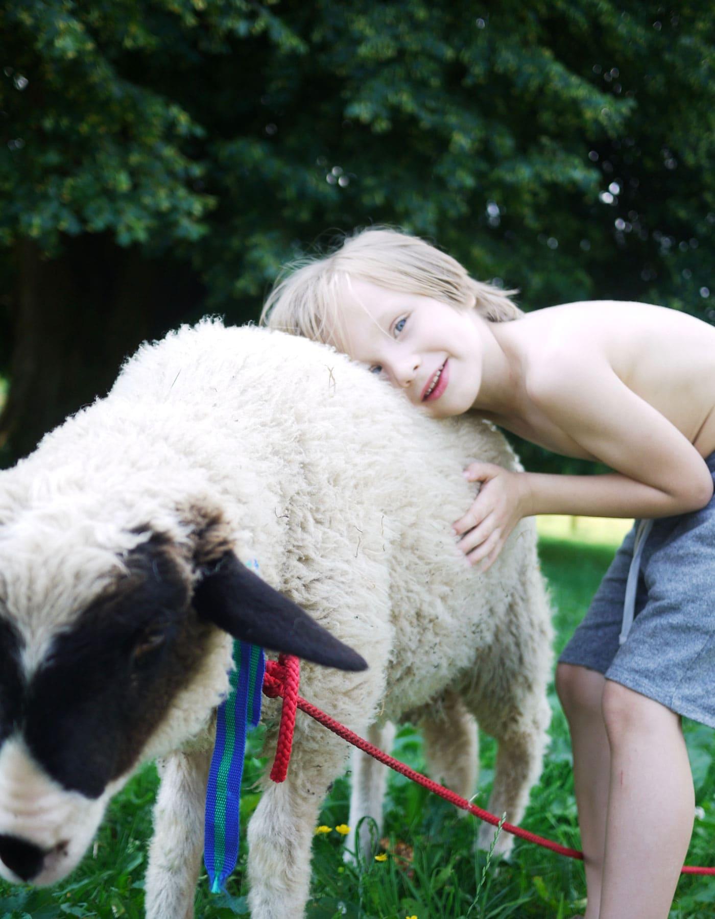 Tiere sehen und erleben bei Ausflügen mit Kindern in Brandenburg // HIMBEER