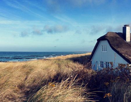Fantastische Familienhotels für einen unvergesslichen Strandurlaub: Strand Ahrenshoop // HIMBEER