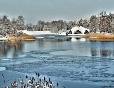 Winter in Berliner Parks: Im Britzer Garten // HIMBEER