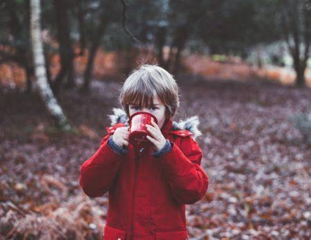 Den Herbst mit Kindern in Berlin im Wald verbringen // HIMBEER