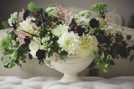 Blumen // HIMBEER