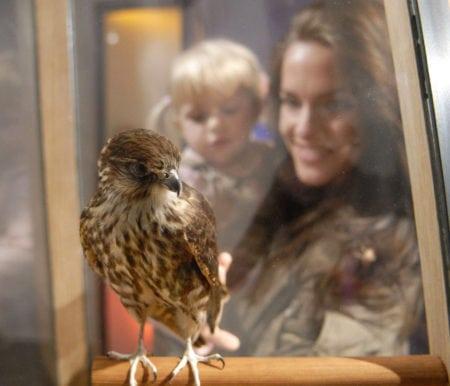Familien-Ausflugstipps mit Übernachtung: Naturerlebniszentrum Müritzeum // HIMBEER
