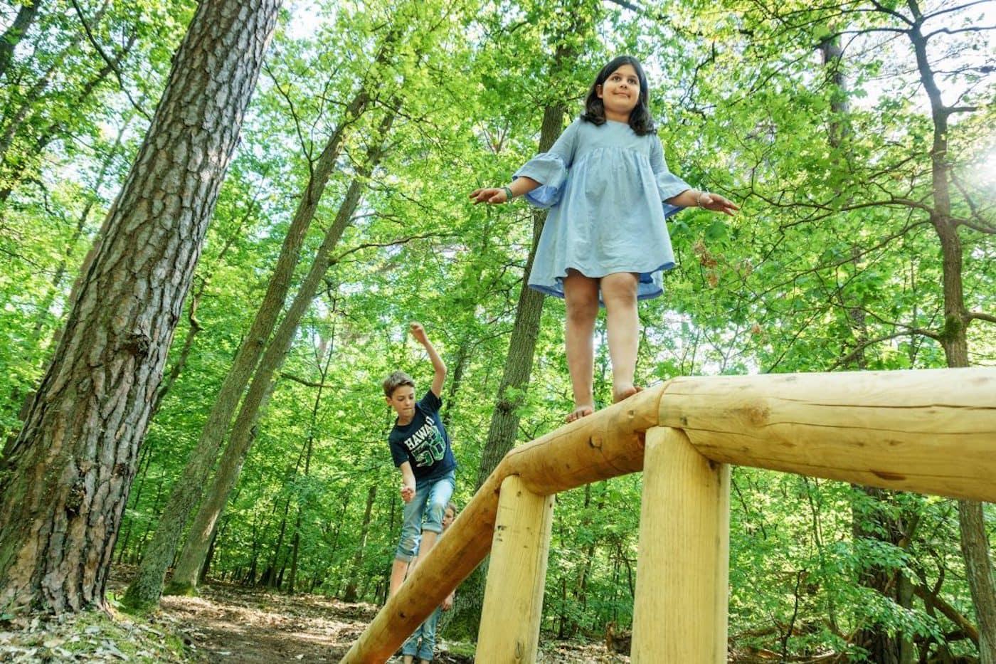 Ausflüge für Berliner mit Kindern: Barfußpark Beelitz HeilstättenAusflug, Natur // HIMBEER