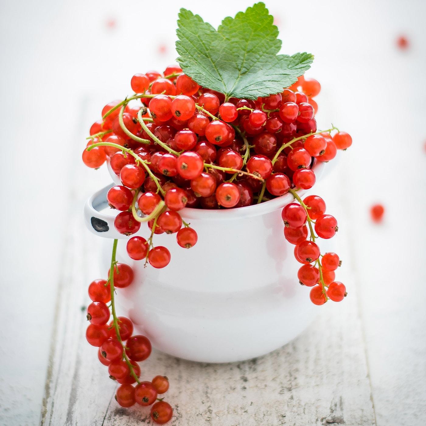Frische Beeren-Rezepte für Familien, die Kindern schmecken: Johannisbeer-Lassi // HIMBEER