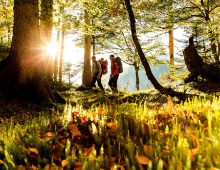 Chiemgau-Karte: Freier Eintritt in den Bergsommer // HIMBEER