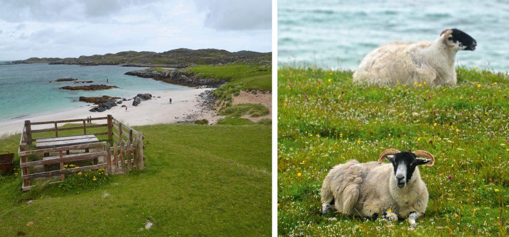 Reisetipp für Familien: Wandern in Schottland // HIMBEER