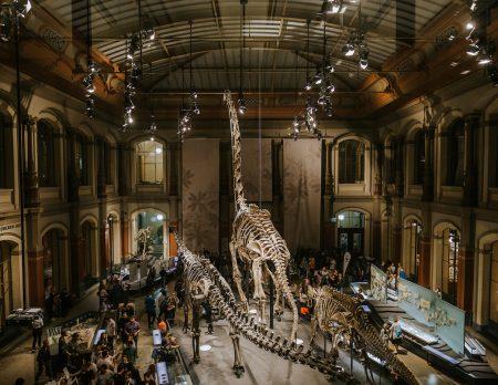 Lange Nacht der Museen 2019 Berlin // HIMBEER