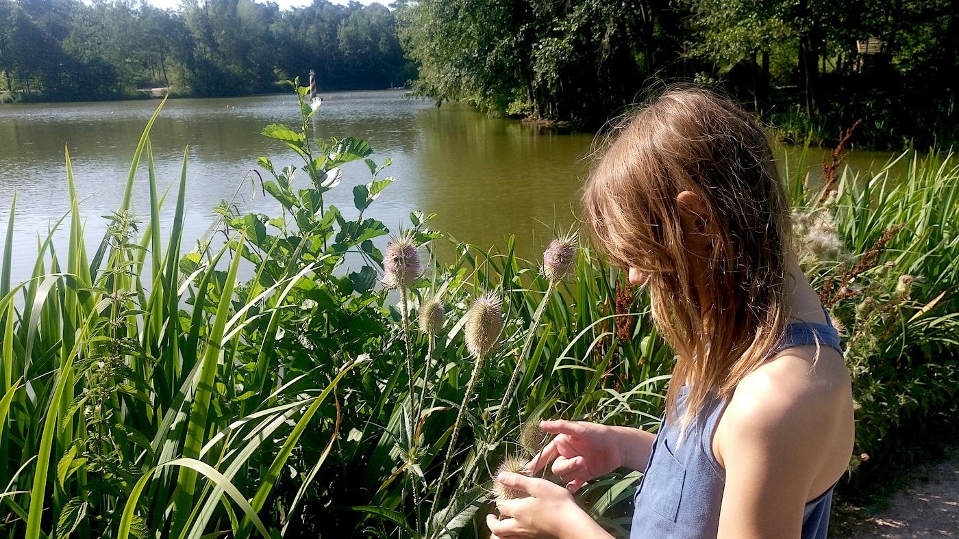 Ferienpark Bispinger Heide Lüneburger Heide See Urlaub mit Kind Antje Koelling Berlin mit Kind // HIMBEER