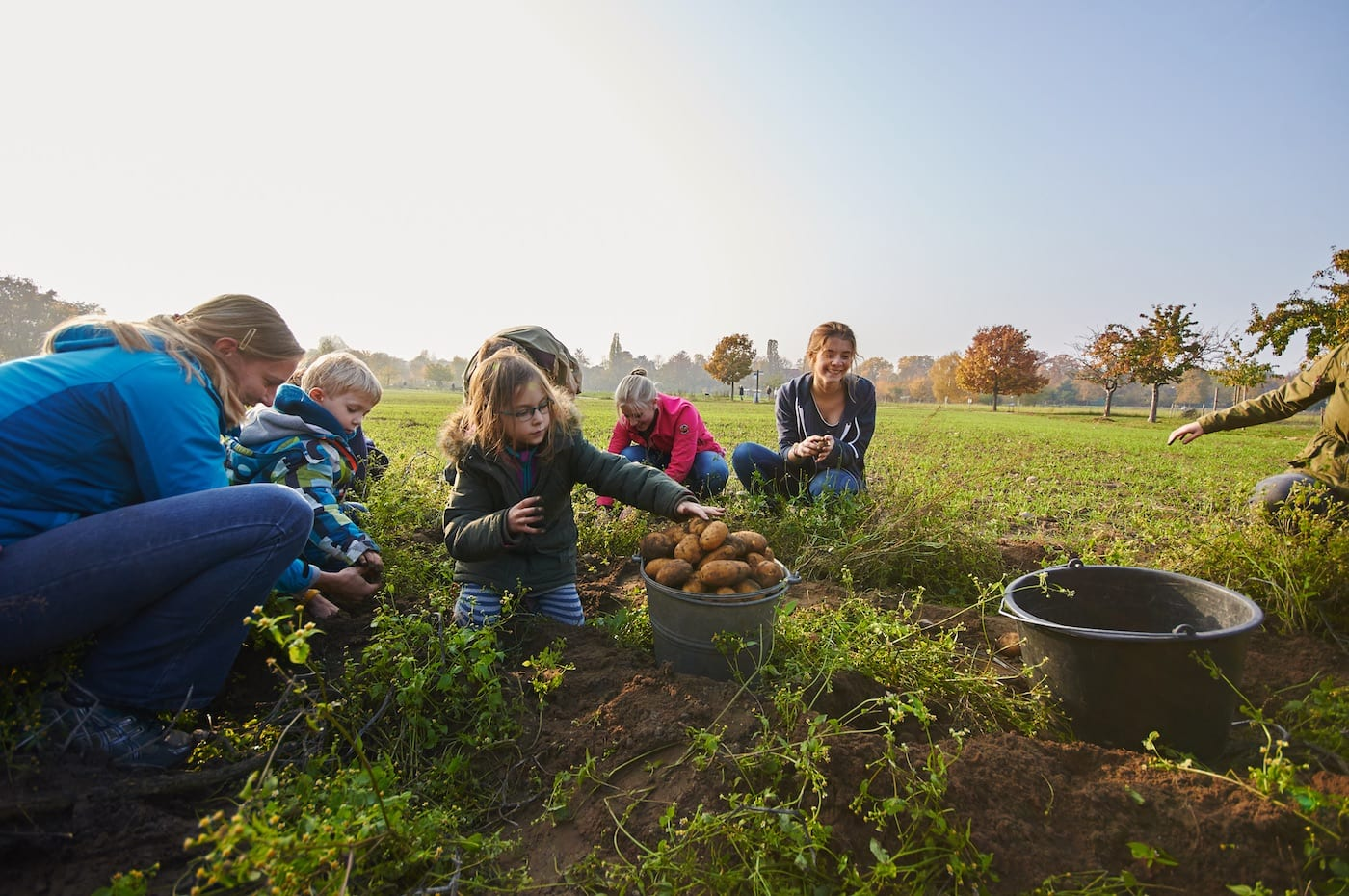 Kartoffelernte Kartoffelfest Domäne Dahlem Berlin mit Kind // HIMBEER
