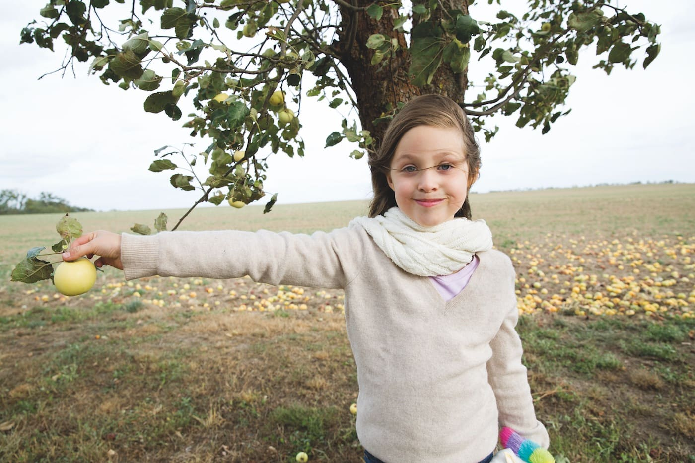 Landleben für Großstadtfamilien: Apfelernte auf dem Land // HIMBEER