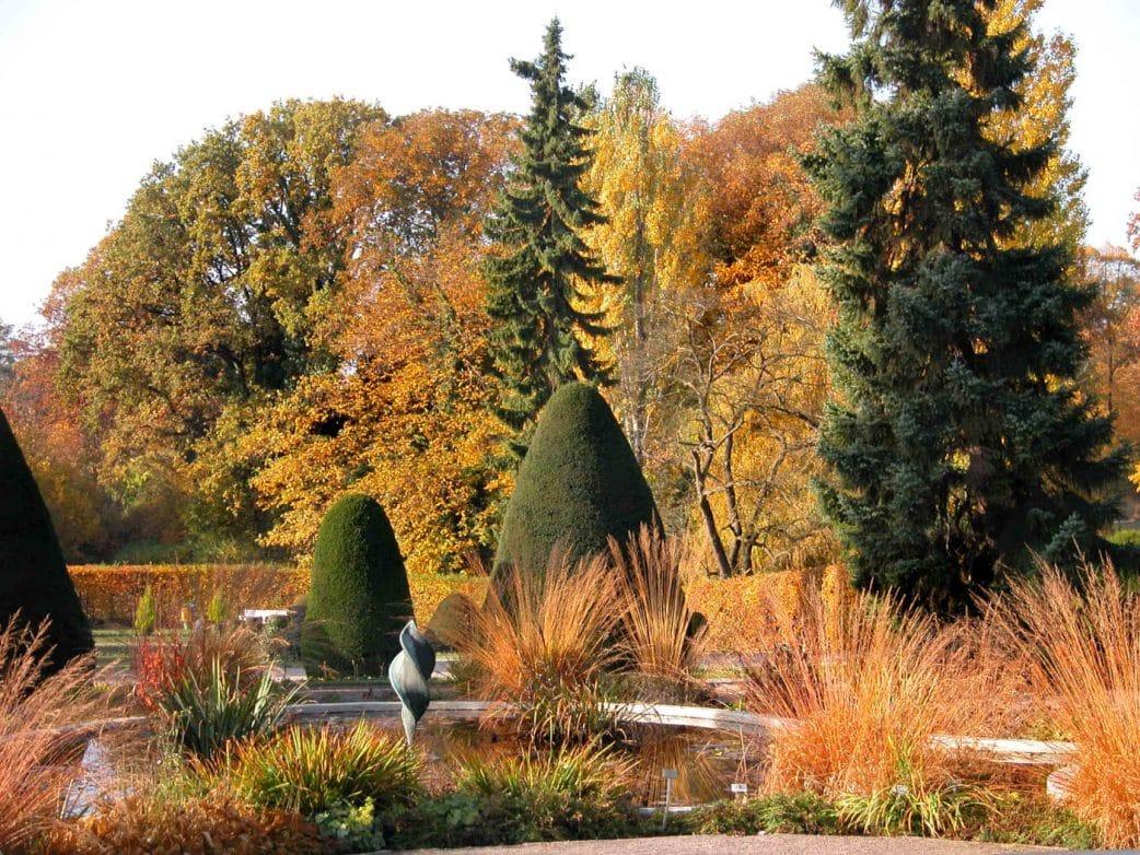 Mini-Tipps: Berlin mit Baby und – Botanischer Garten // HIMBEER