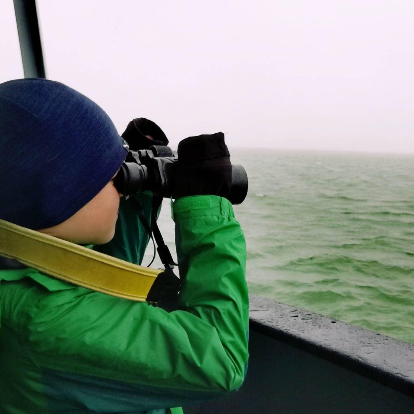 Familienurlaub in Zeeland, Niederlande: Whale Watching mit Kindern // HIMBEER