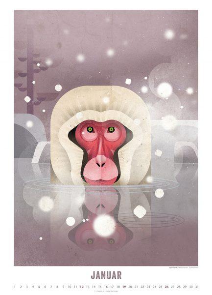 Die schönsten Wandkalender für Kinder 2020: Welt der Tiere 2020 von Dieter Braun, Kalenderblatt Januar // HIMBEER