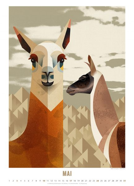 Die schönsten Wandkalender für Kinder 2020: Welt der Tiere 2020 von Dieter Braun, Kalenderblatt Mai // HIMBEER