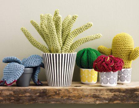 DIY: Aloe Vera Pflanze häkeln // HIMBEER