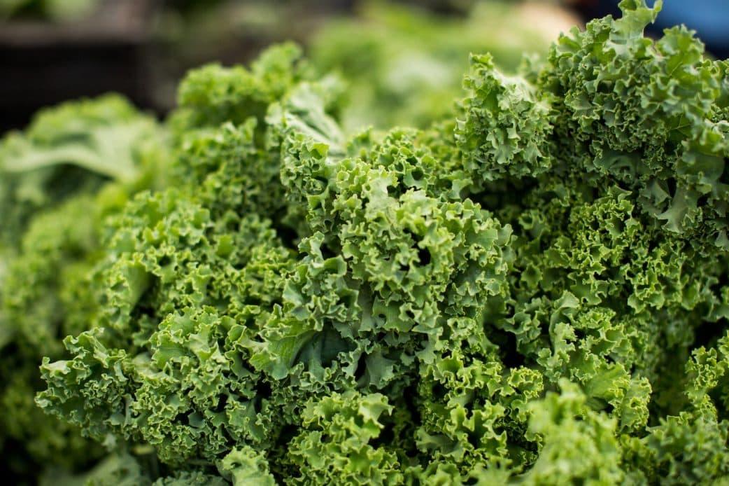 Rezept: Caesar Salad mit Grünkohl // HIMBEER