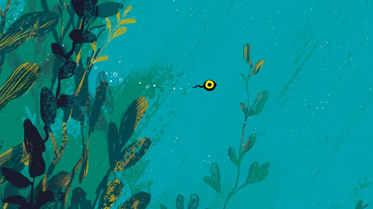 Kinderbuch-Tipp: Quappi von Benji Davies // HIMBEER
