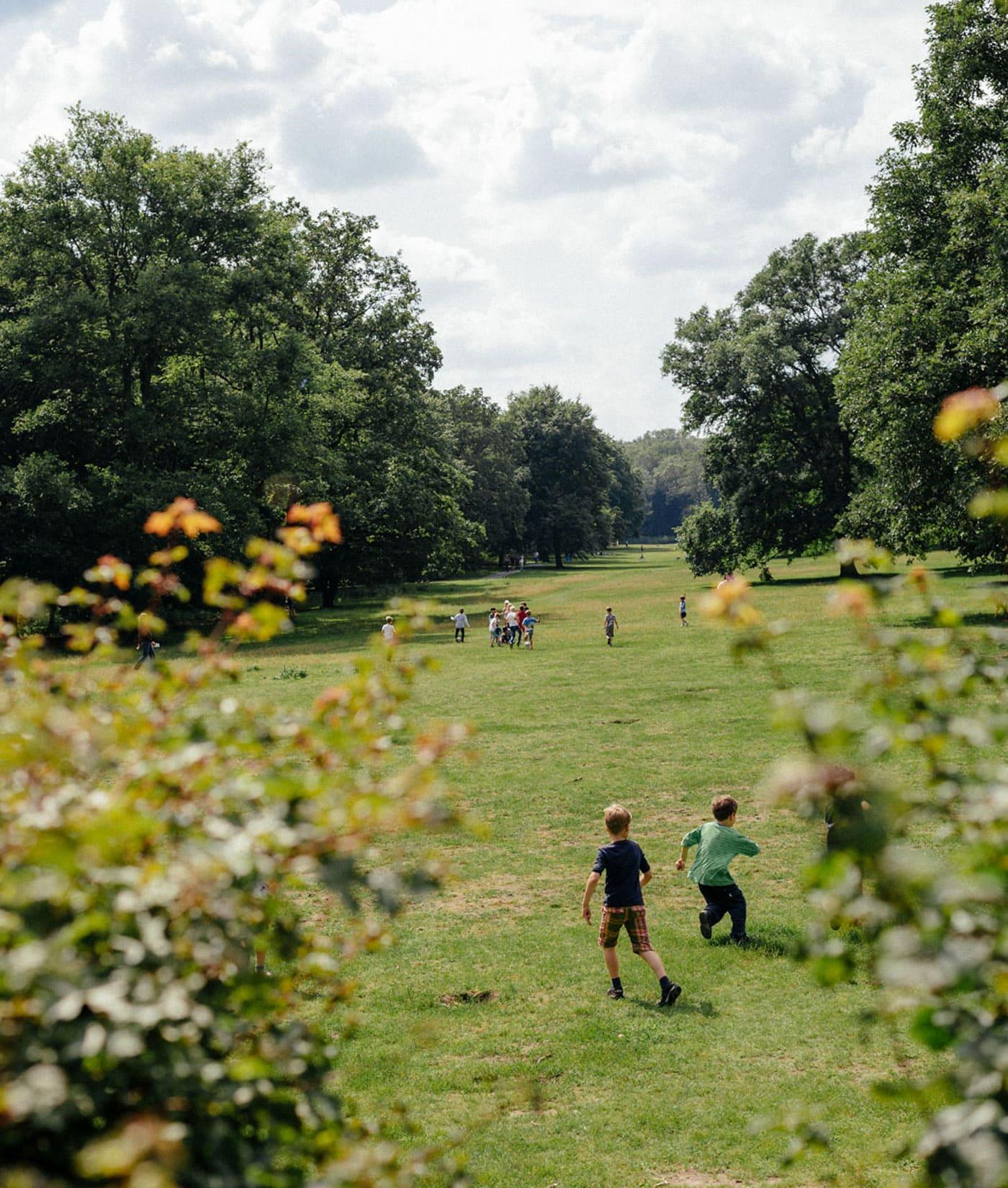 Ausflug mit Kindern in Berlin: Wiesen im Wald // HIMBEER