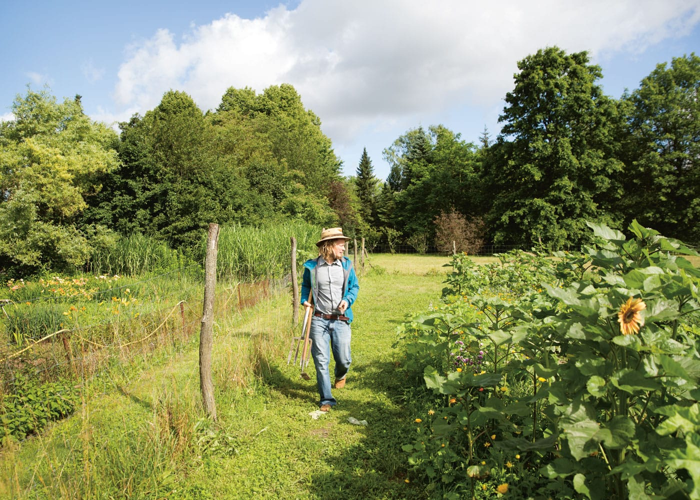 Gärtnern für Städter: bauerngarten // HIMBEER