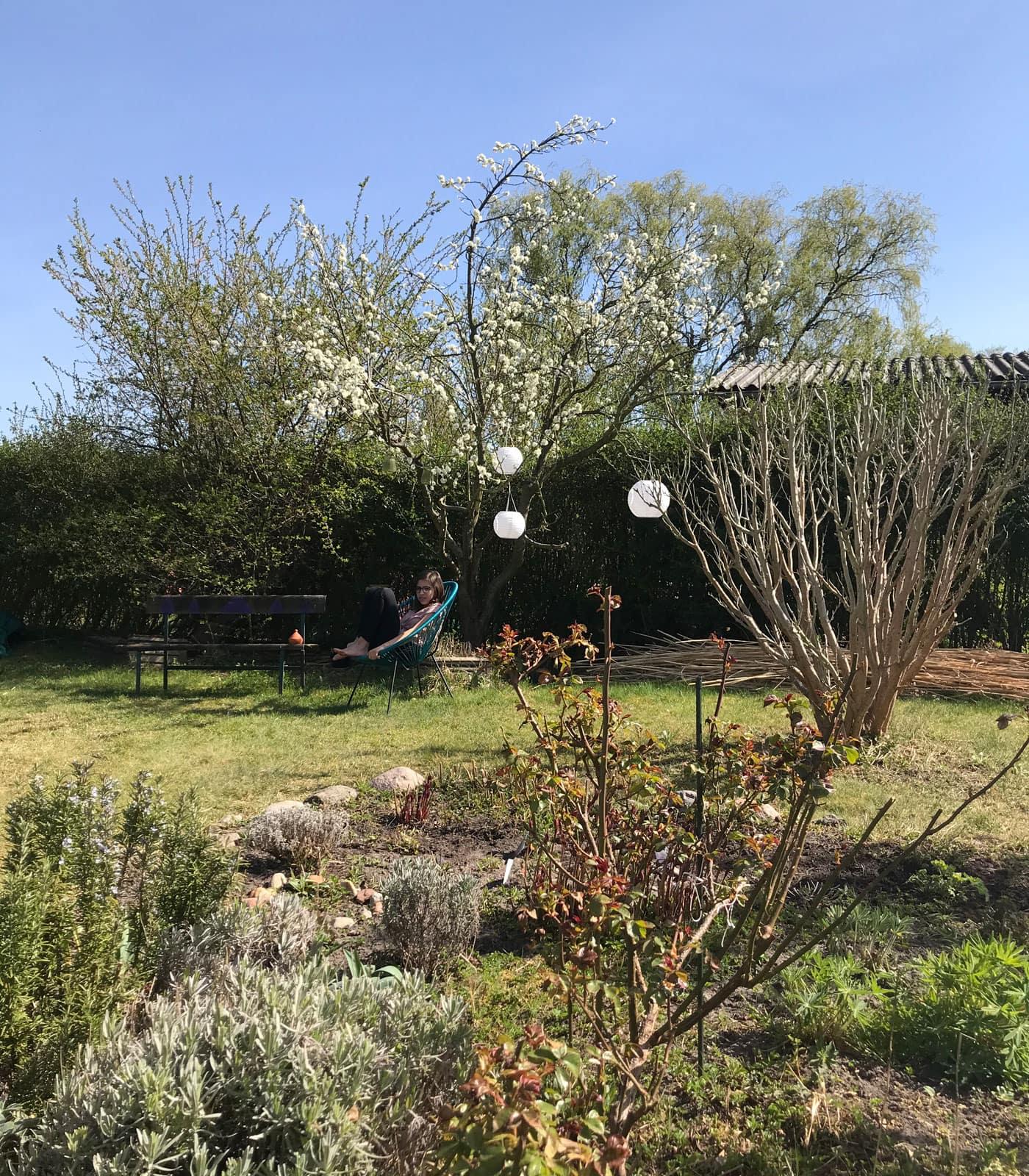 Glück, wer einen Garten hat und dem Homeoffice mal entfliehen kann // HIMBEER