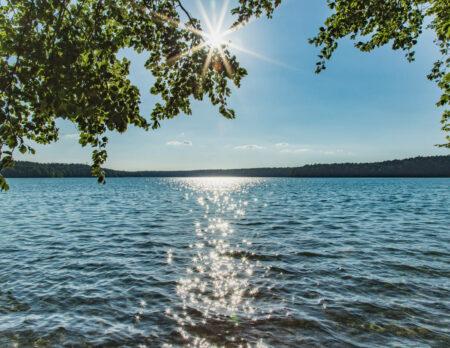 Ausflug für Familien: Der Naturpark Stechlin-Ruppiner Land