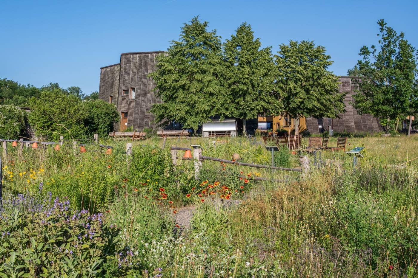 Ausflugstipps zum  Muttertag: NABU Naturerlebniszentrum Blumberger Mühle – Ausflugsziel für Familien mit Kindern// HIMBEER